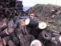 Feuerholz Zuschnitt