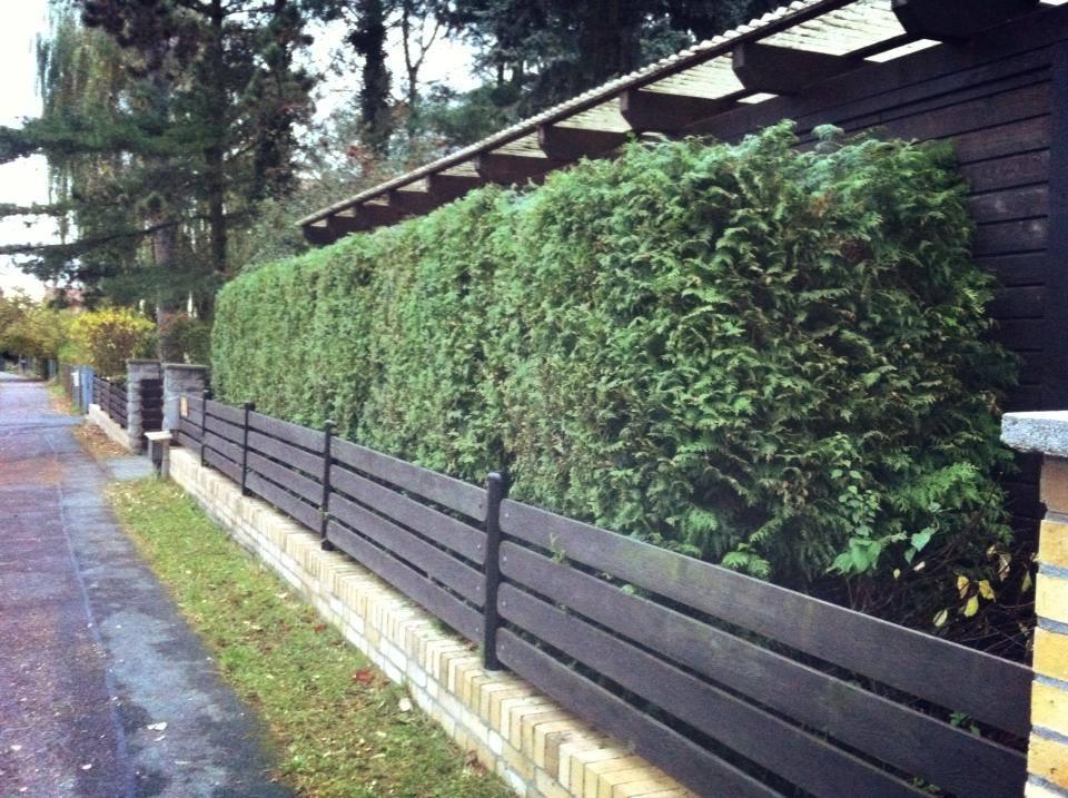 Beispiele f r dienstleistungen tauer hausmeisterservice for Garten und landschaftspflege
