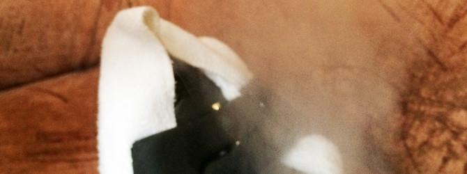 Polsterreinigung mit Hilfe von Dampf